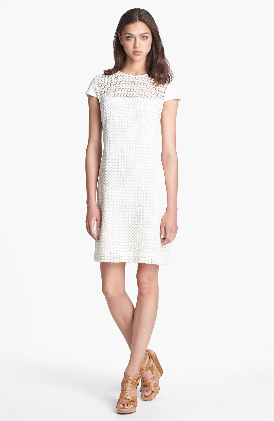 Alternate Image 1 Selected - Calvin Klein Cotton Shift Dress