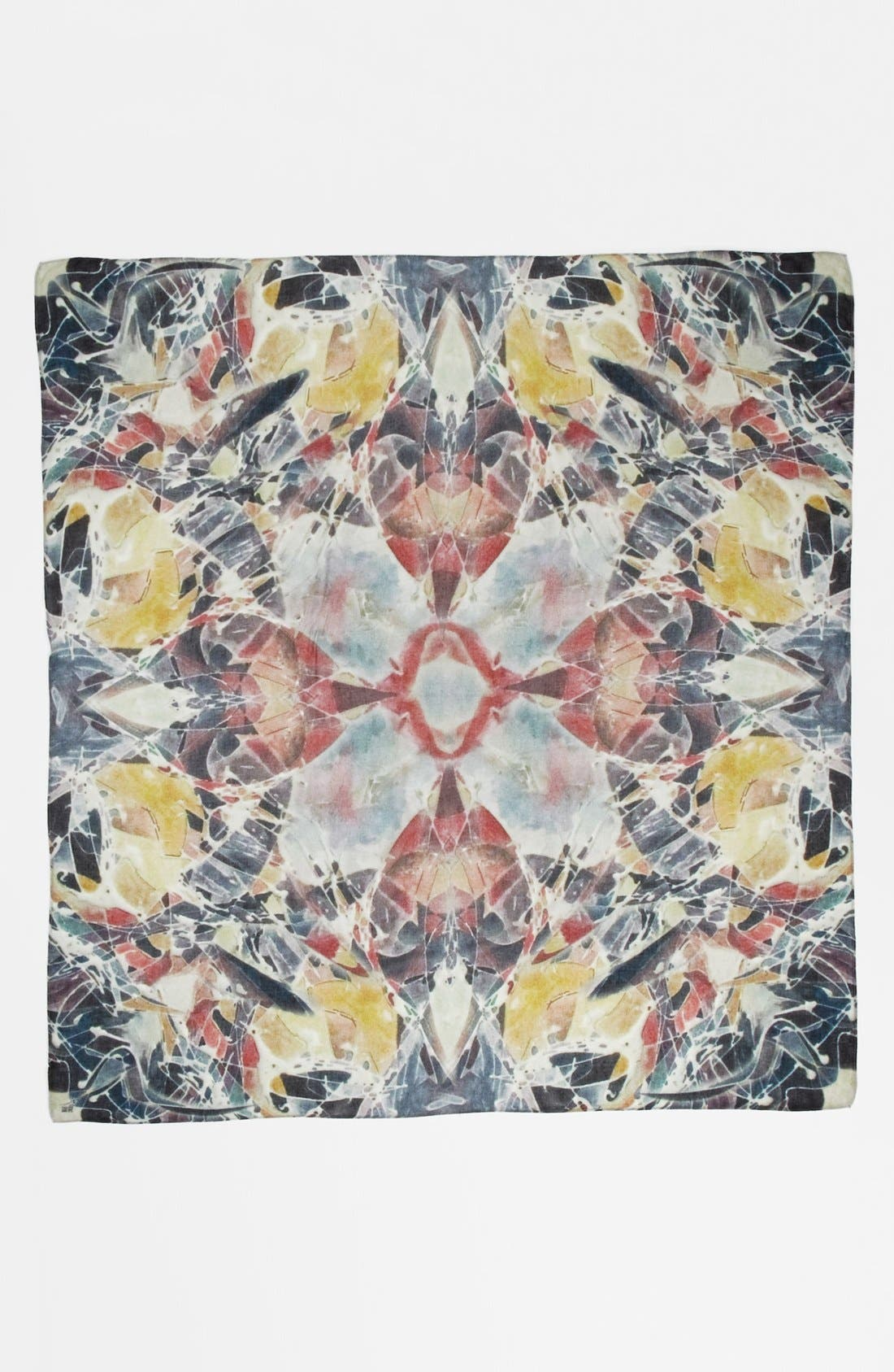 Alternate Image 2  - Front Row Society 'Frosted Flower' Scarf