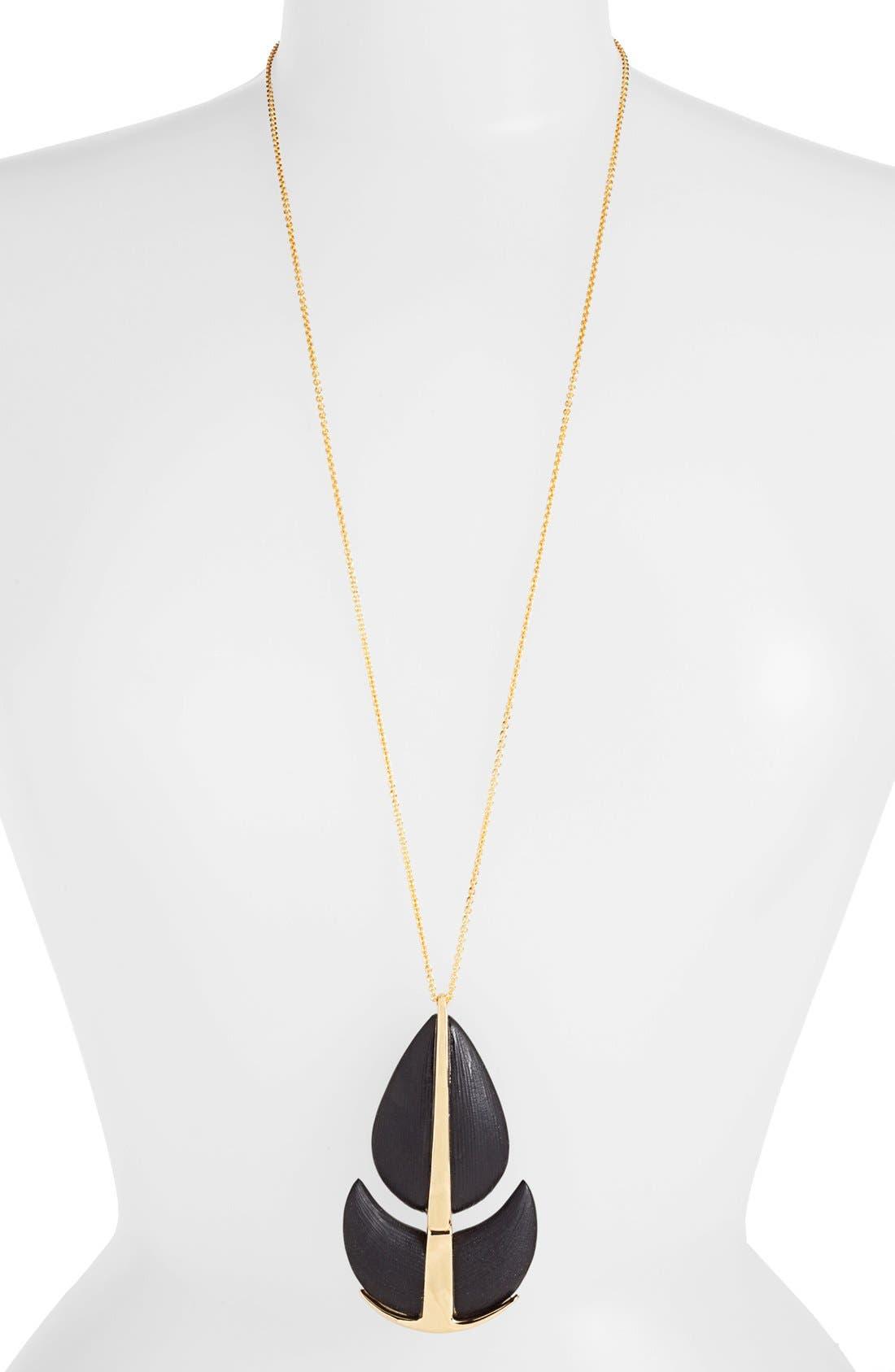 Alternate Image 1 Selected - Alexis Bittar 'Lucite® - Neo Bohemian' Long Pendant Necklace