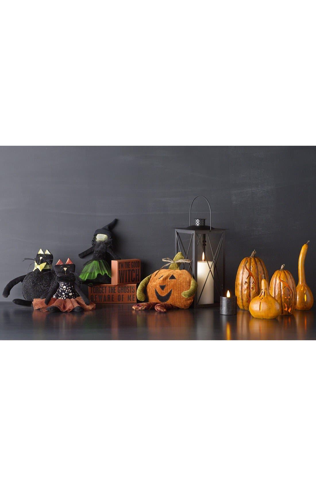 Alternate Image 2  - Fantastic Craft Gourd Jack-o'-Lantern
