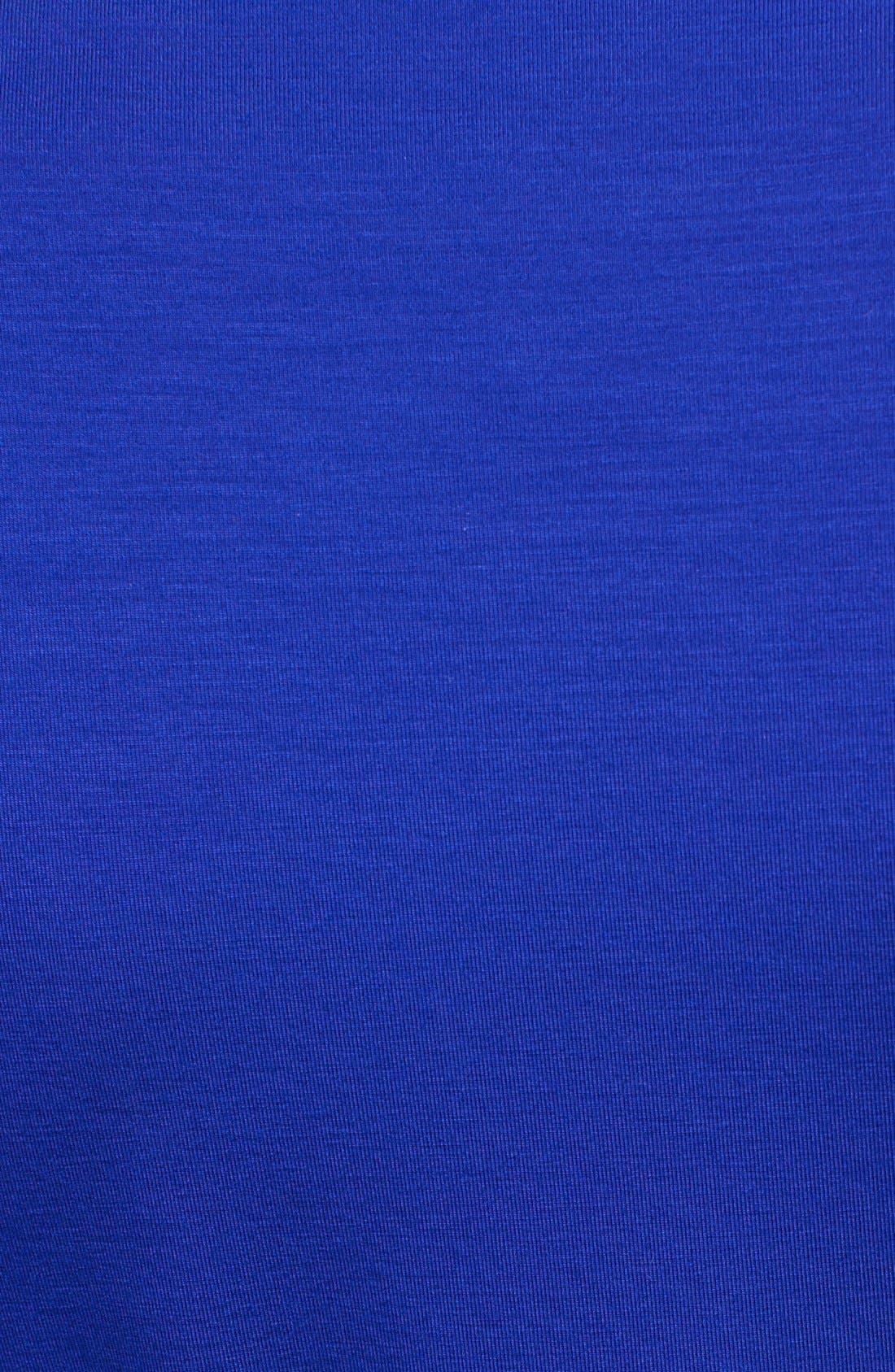 Alternate Image 3  - Diane von Furstenberg 'New Julian 2' Jersey Wrap Minidress