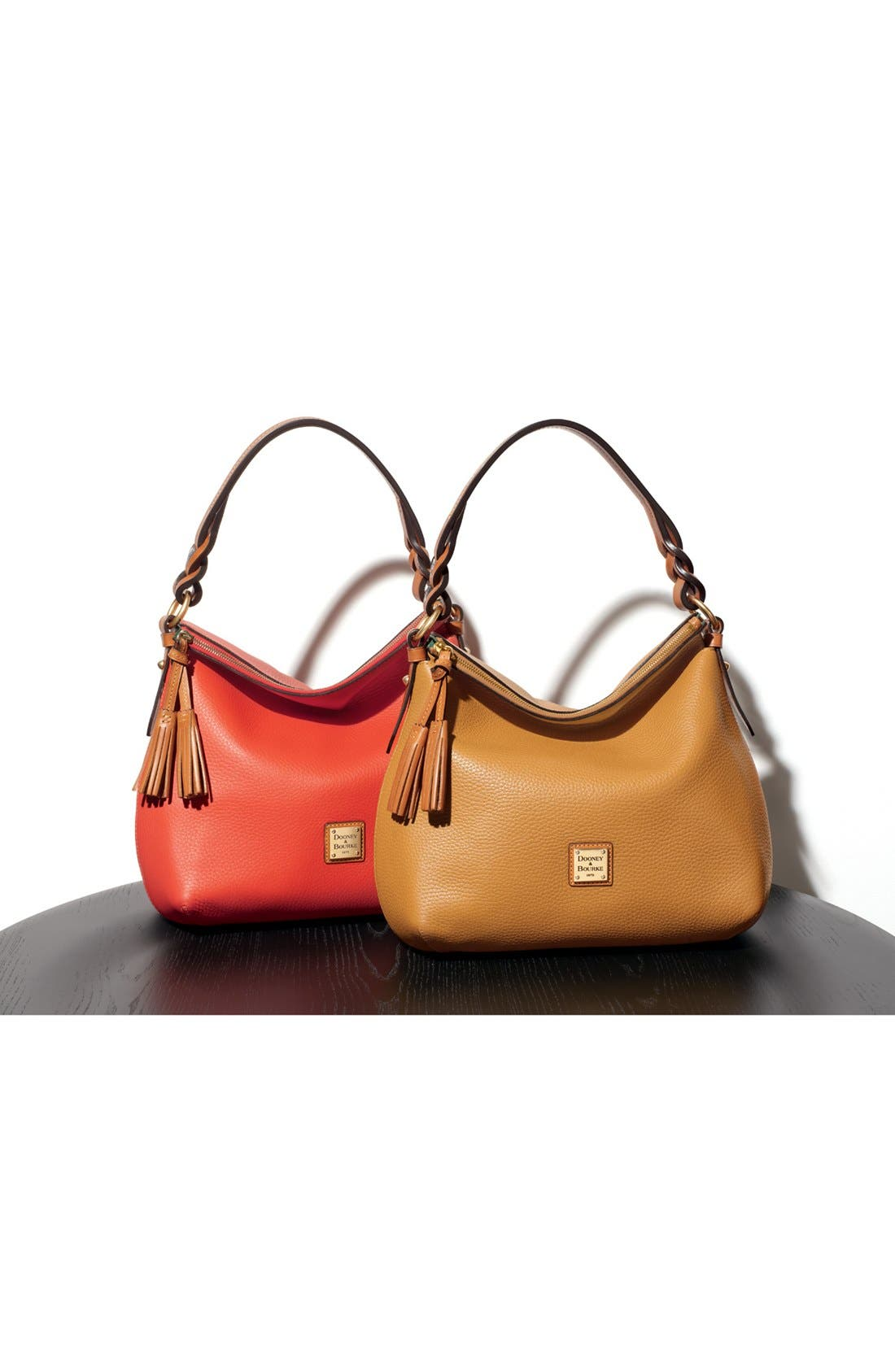 Alternate Image 6  - Dooney & Bourke Leather Hobo