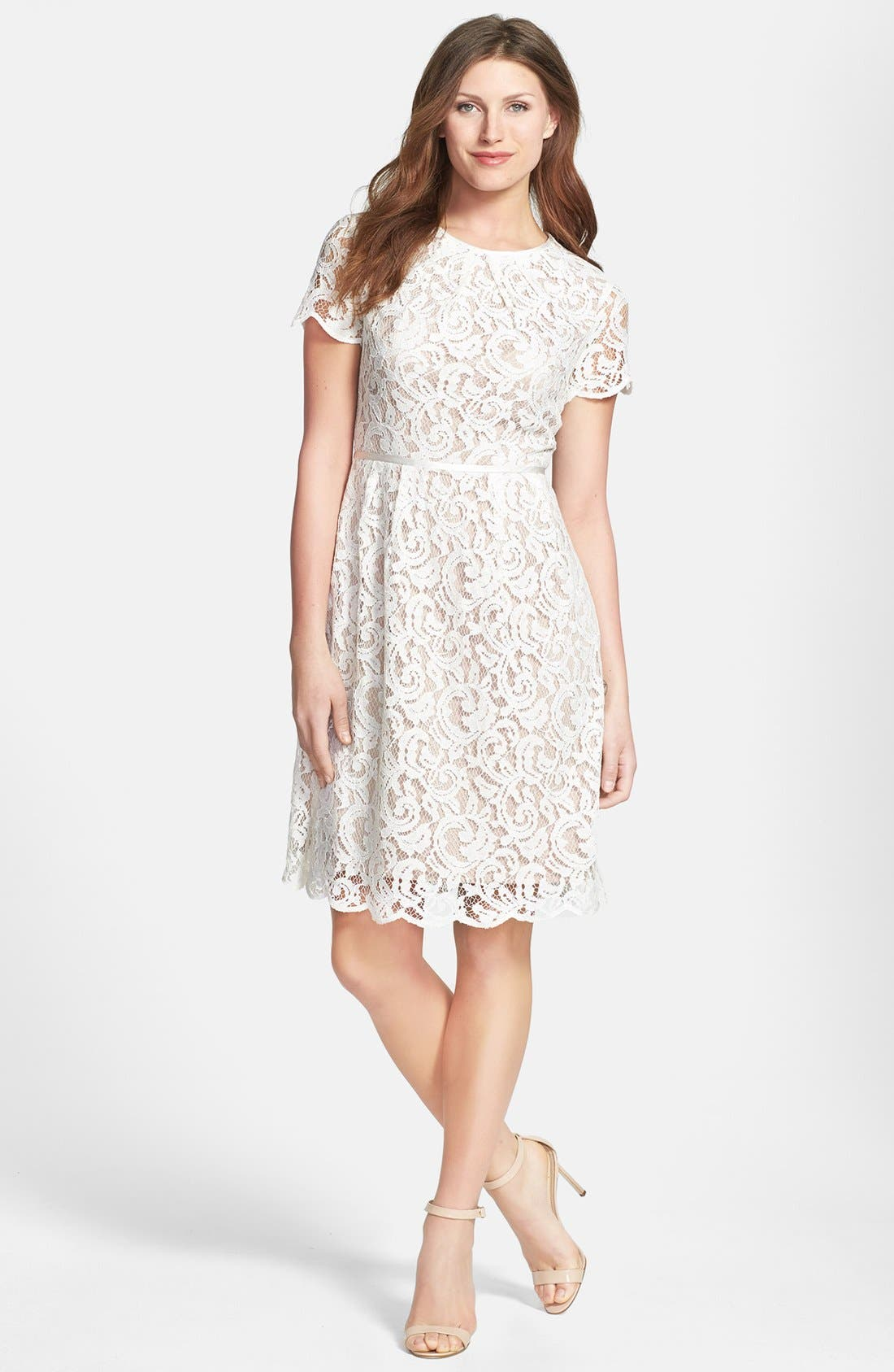Alternate Image 3  - Adrianna Papell Scalloped Lace Dress (Regular & Petite)
