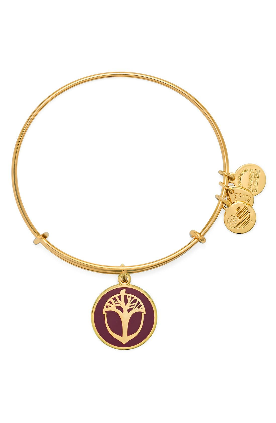 Alternate Image 1 Selected - Alex and Ani'Unexpected Miracles' Expandable Bangle