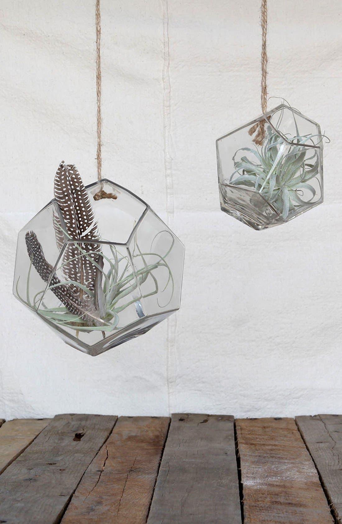 Alternate Image 2  - HomArtGlass Terrarium Holder