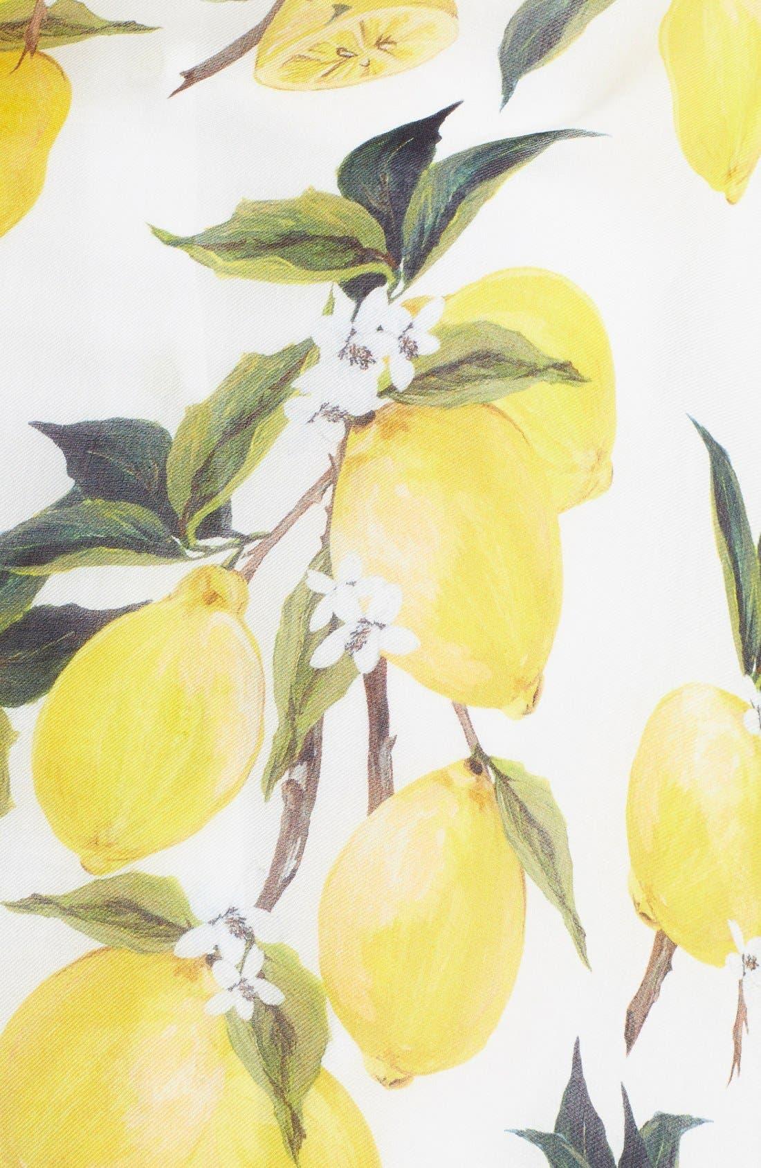 Alternate Image 2  - Dolce&Gabbana Lemon Print Modal & Cashmere Scarf