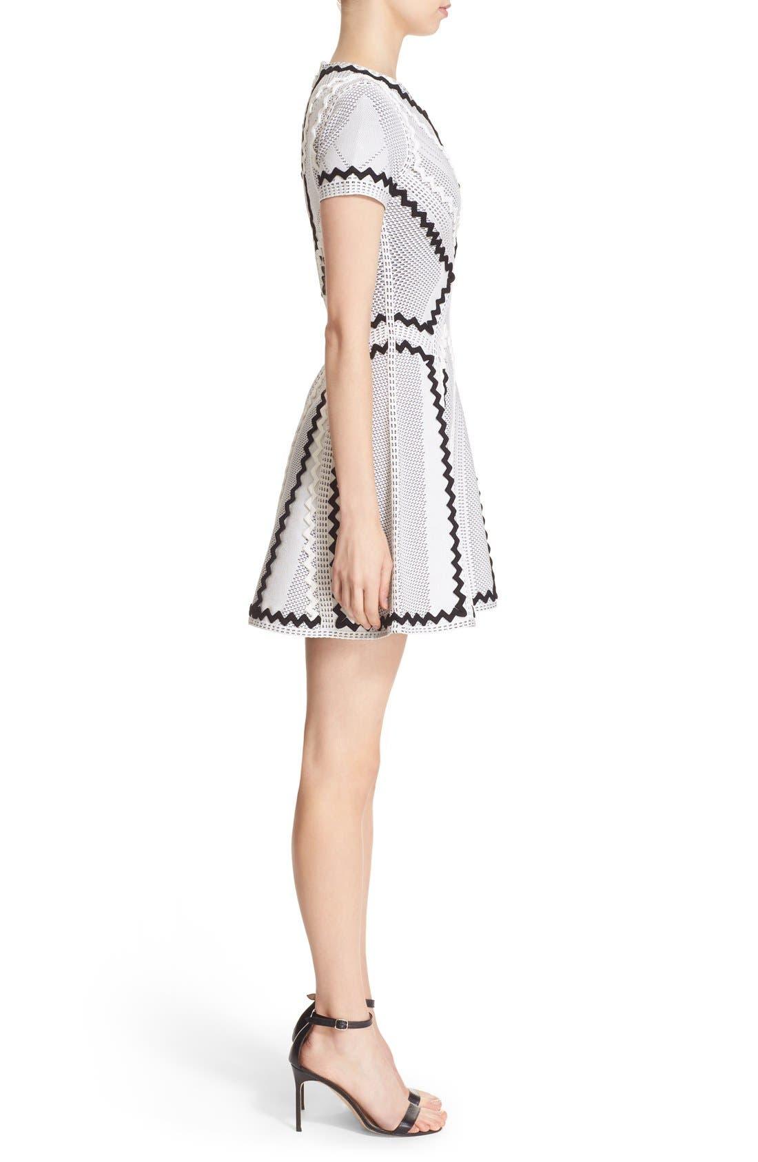 Alternate Image 4  - Herve Leger 'Morena' Zigzag Appliqué Pointelle Knit Fit & Flare Dress