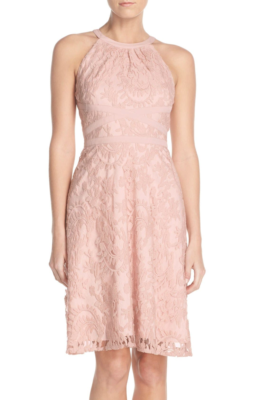 Alternate Image 1 Selected - Adrianna Papell Embroidered Lace Fit & Flare Dress (Regular & Petite)