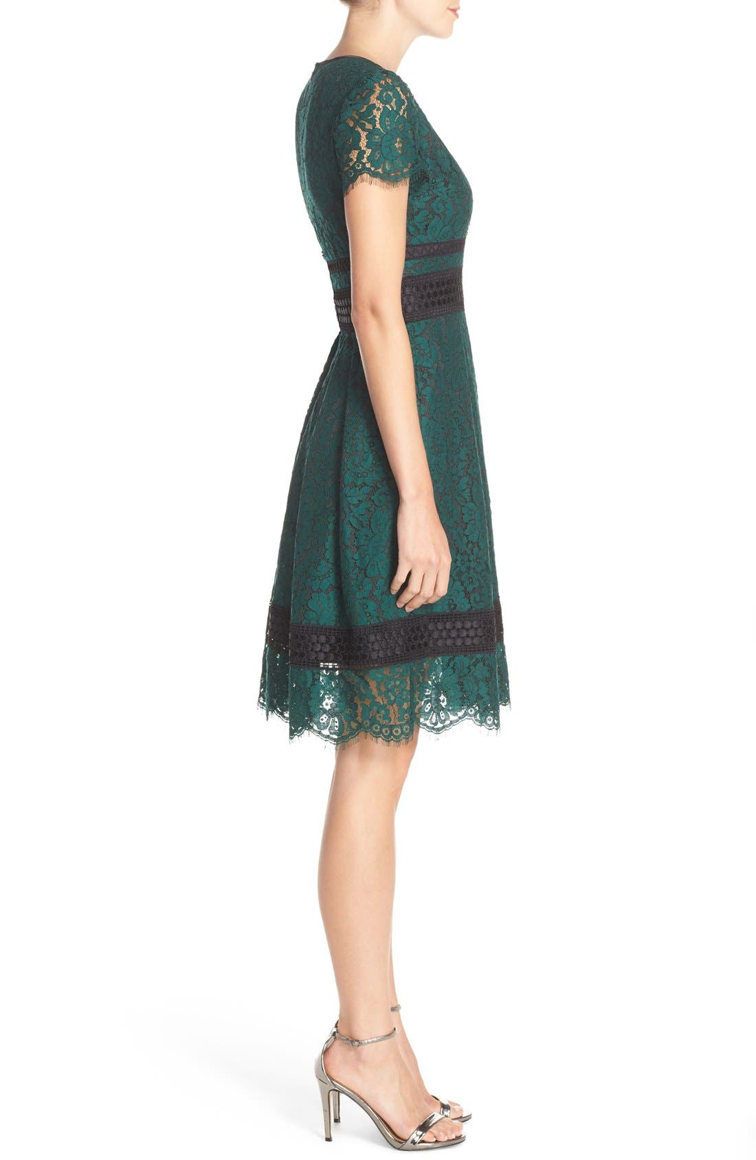 Alternate Image 4  - Eliza J Lace Fit & Flare Dress (Regular & Petite)