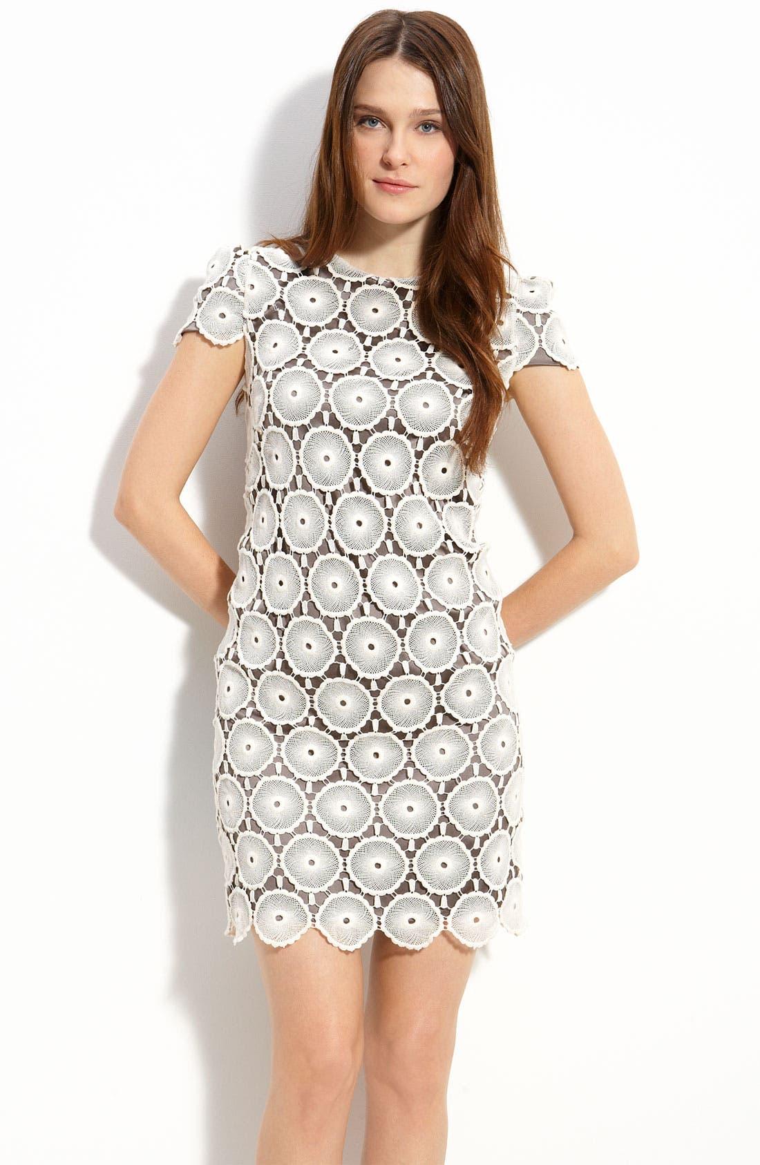 Main Image - Suzi Chin for Maggy Boutique Lace Shift Dress