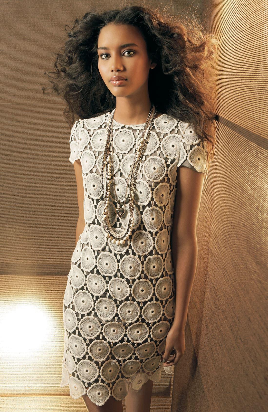 Alternate Image 3  - Suzi Chin for Maggy Boutique Lace Shift Dress