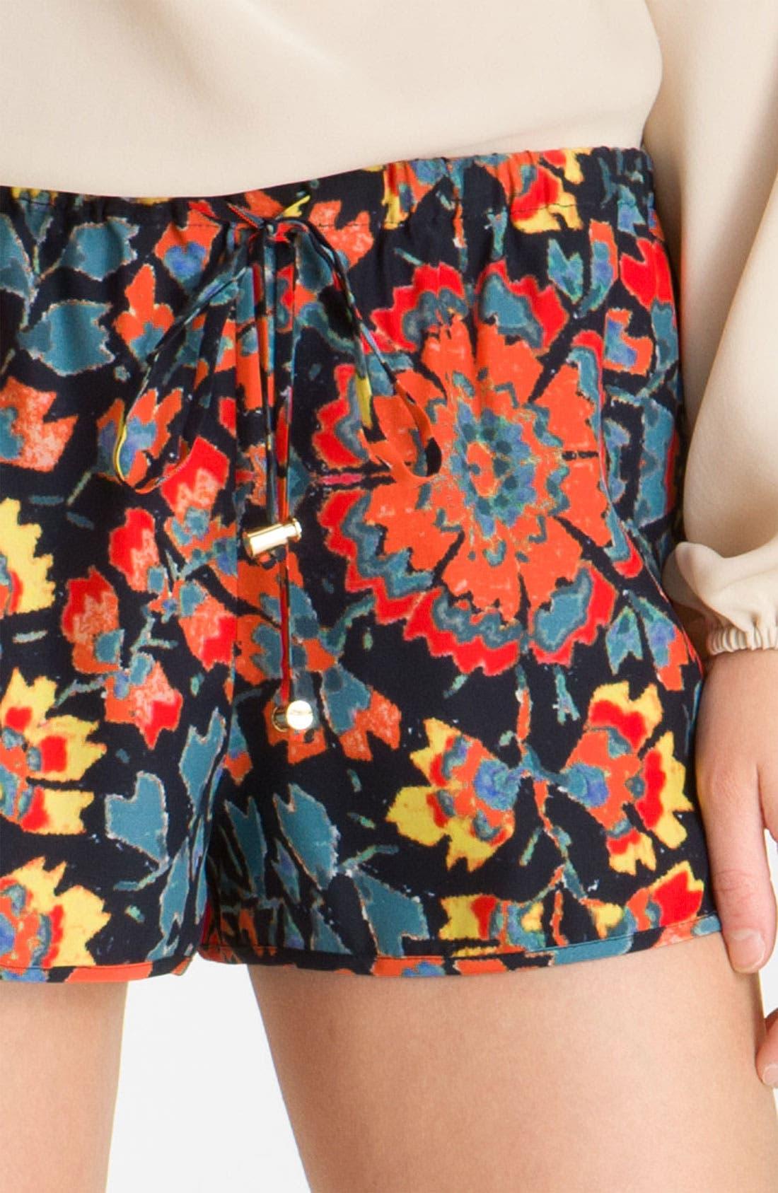 Alternate Image 3  - Haute Hippie Print Drawstring Silk Shorts