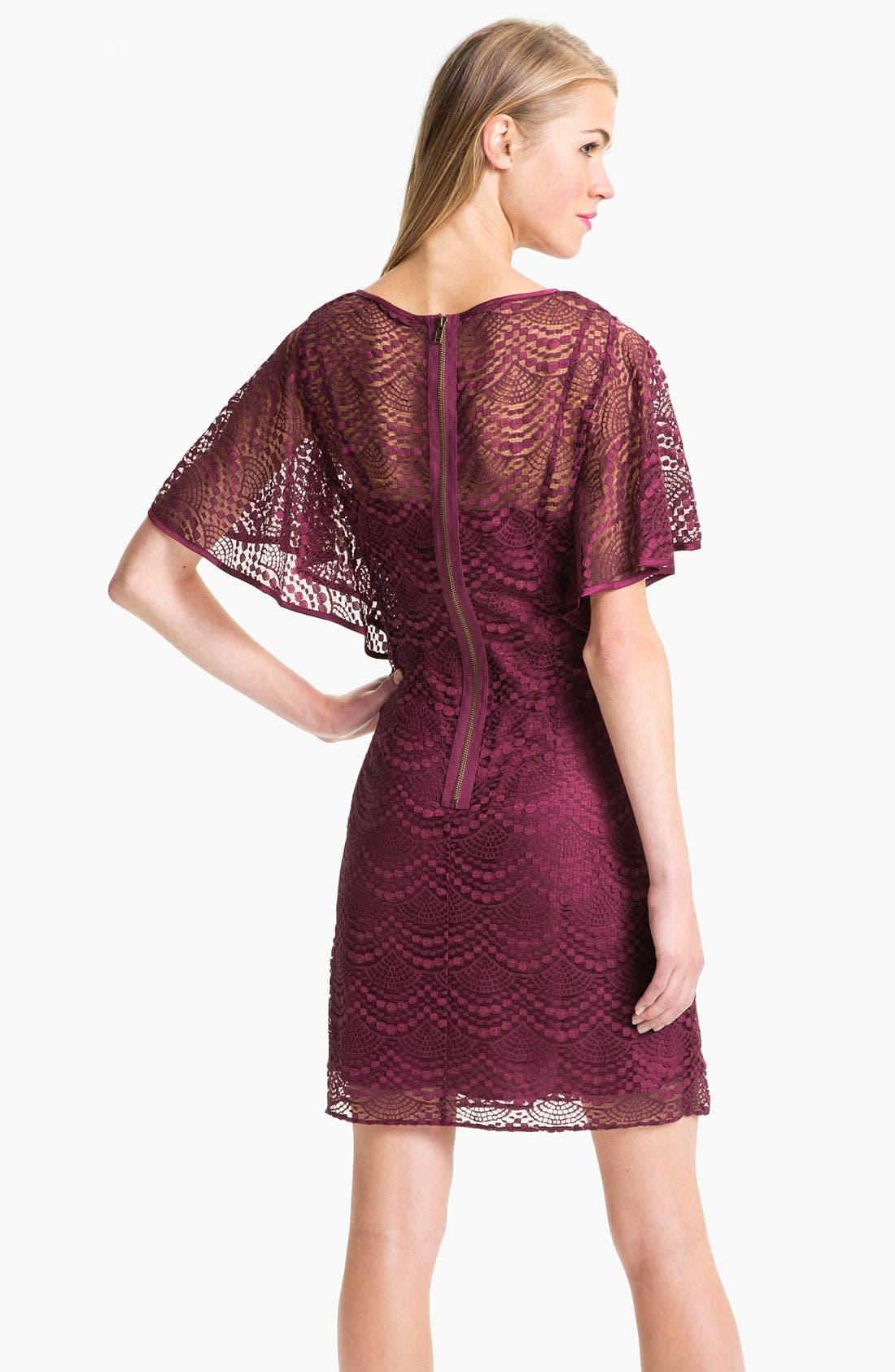 Alternate Image 2  - Adrianna Papell Batwing Lace Overlay Dress