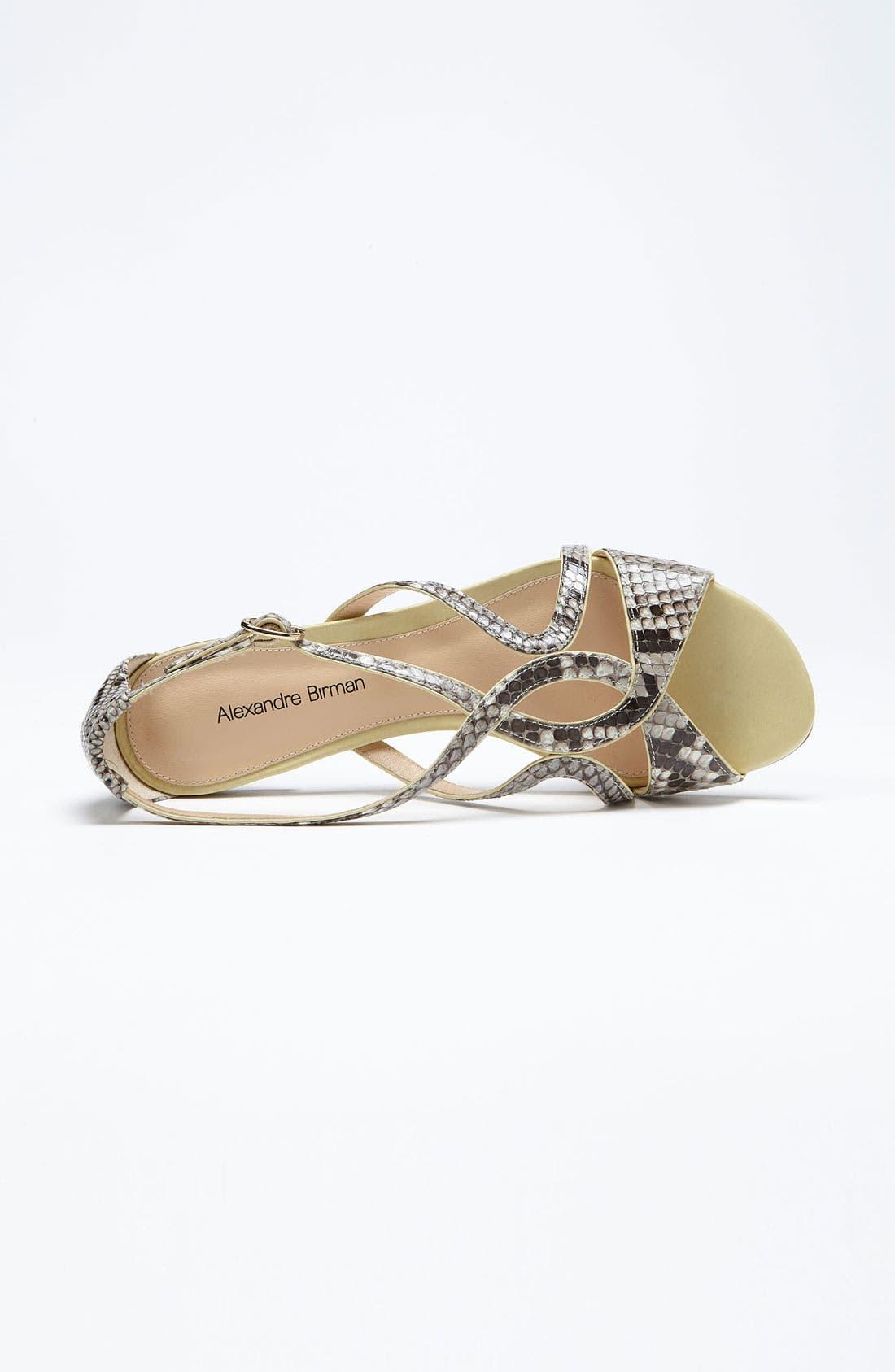 Alternate Image 3  - Alexandre Birman Flat Sandal