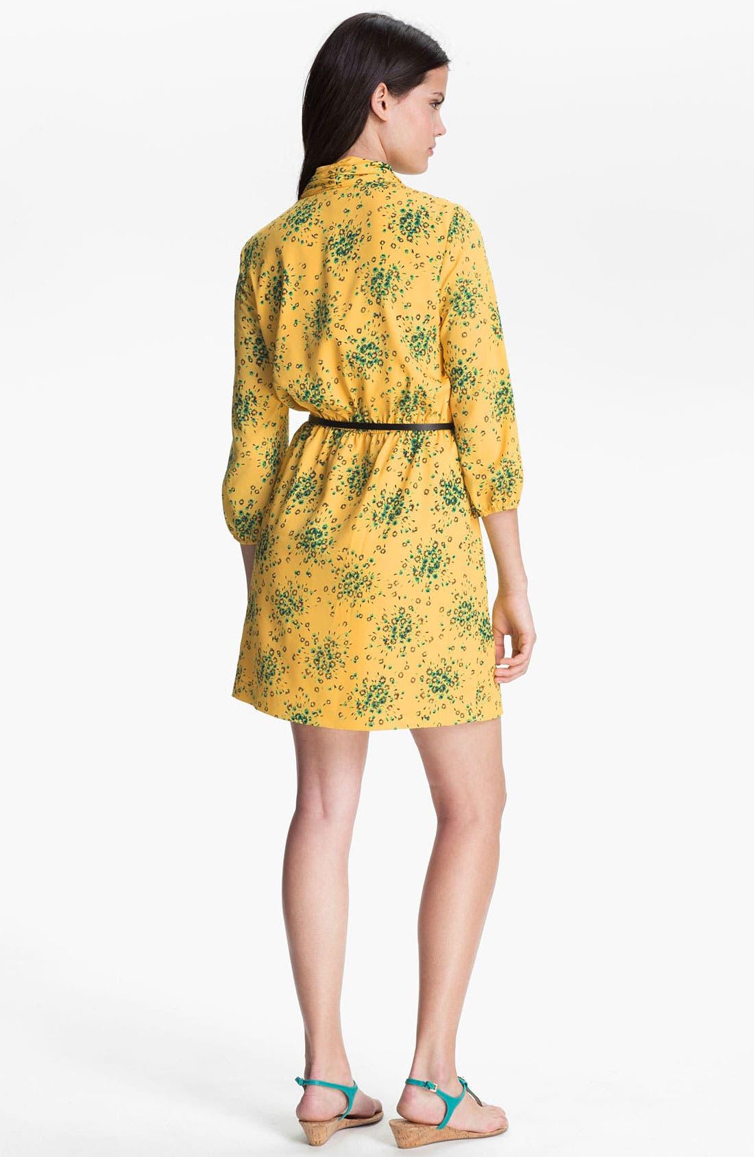 Alternate Image 2  - Kensie 'Daisy Cluster' Dress