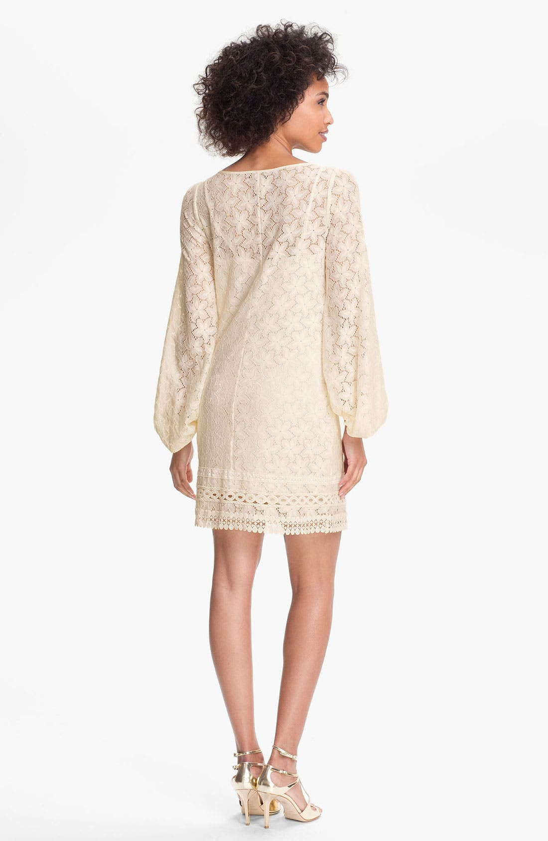 Alternate Image 2  - Laundry by Shelli Segal 'Sand Dollar' Lace Shift Dress (Petite)