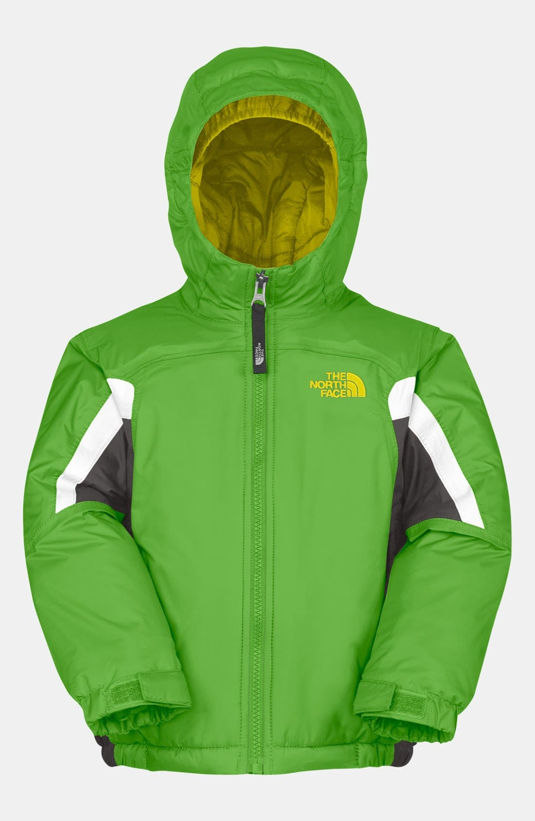 Alternate Image 1 Selected - The North Face 'Out of Bounds' Jacket (Toddler Boys)