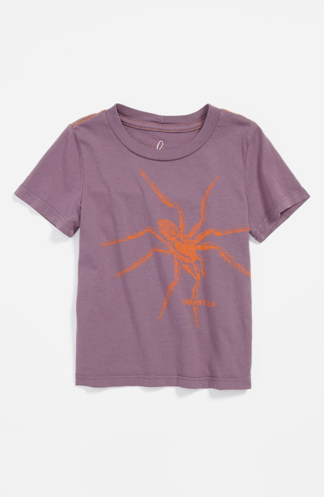 Alternate Image 1 Selected - Peek 'Spider' T-Shirt (Baby Boys)