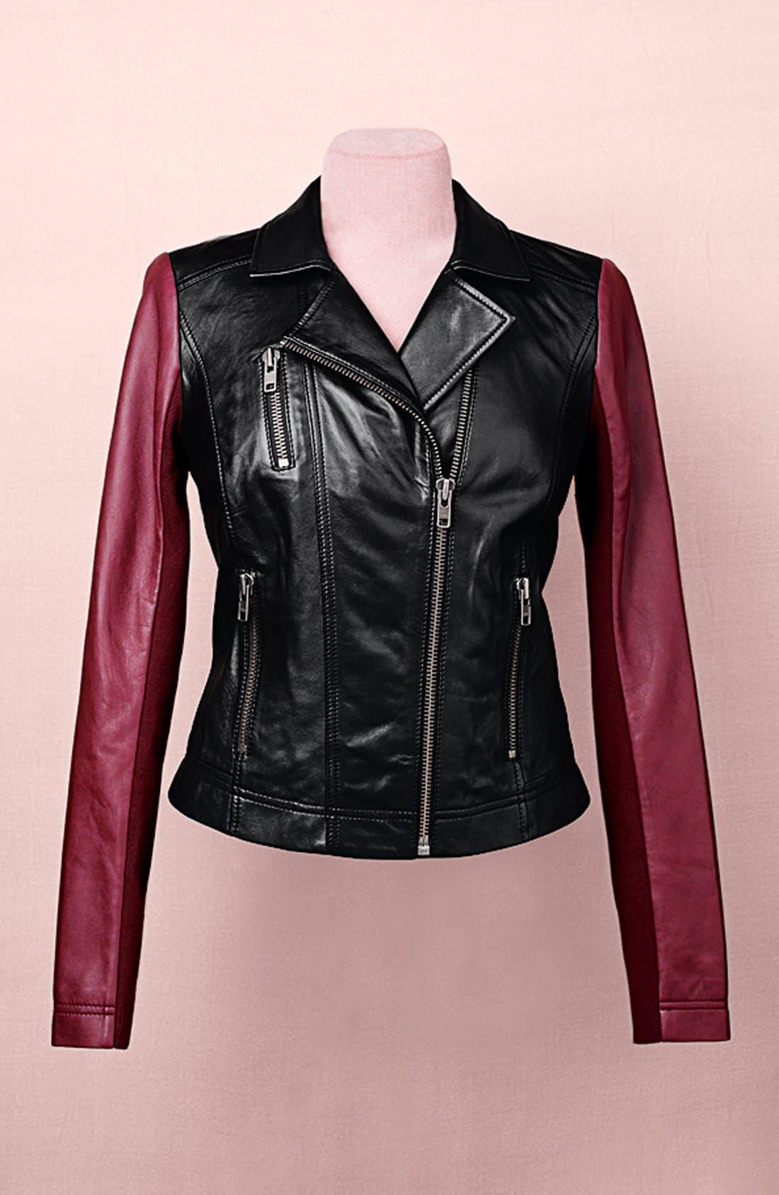 Alternate Image 4  - Halogen® Colorblock Leather Moto Jacket (Plus Size)