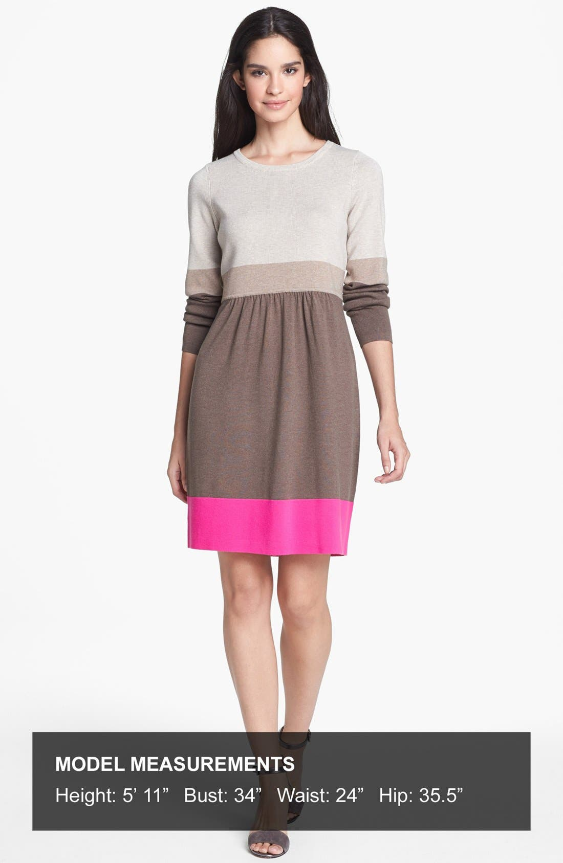 Alternate Image 4  - Eliza J Colorblock Sweater Dress