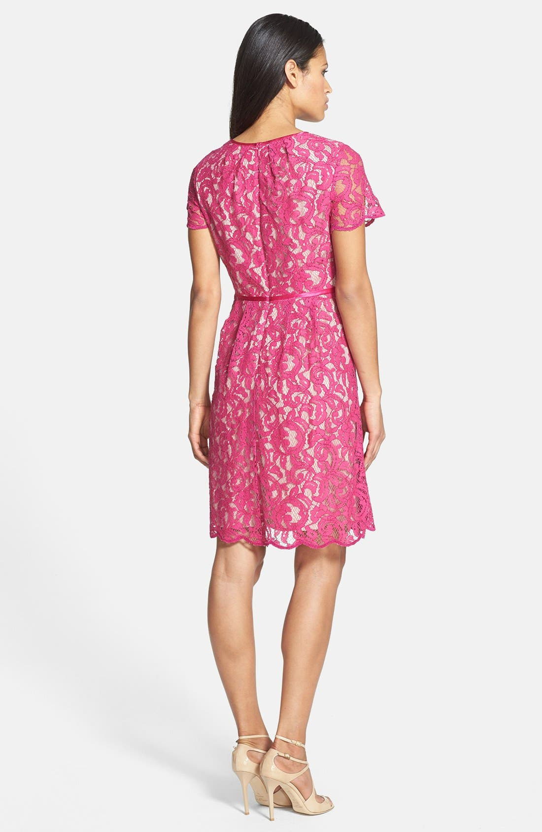 Alternate Image 2  - Adrianna Papell Scalloped Lace Dress