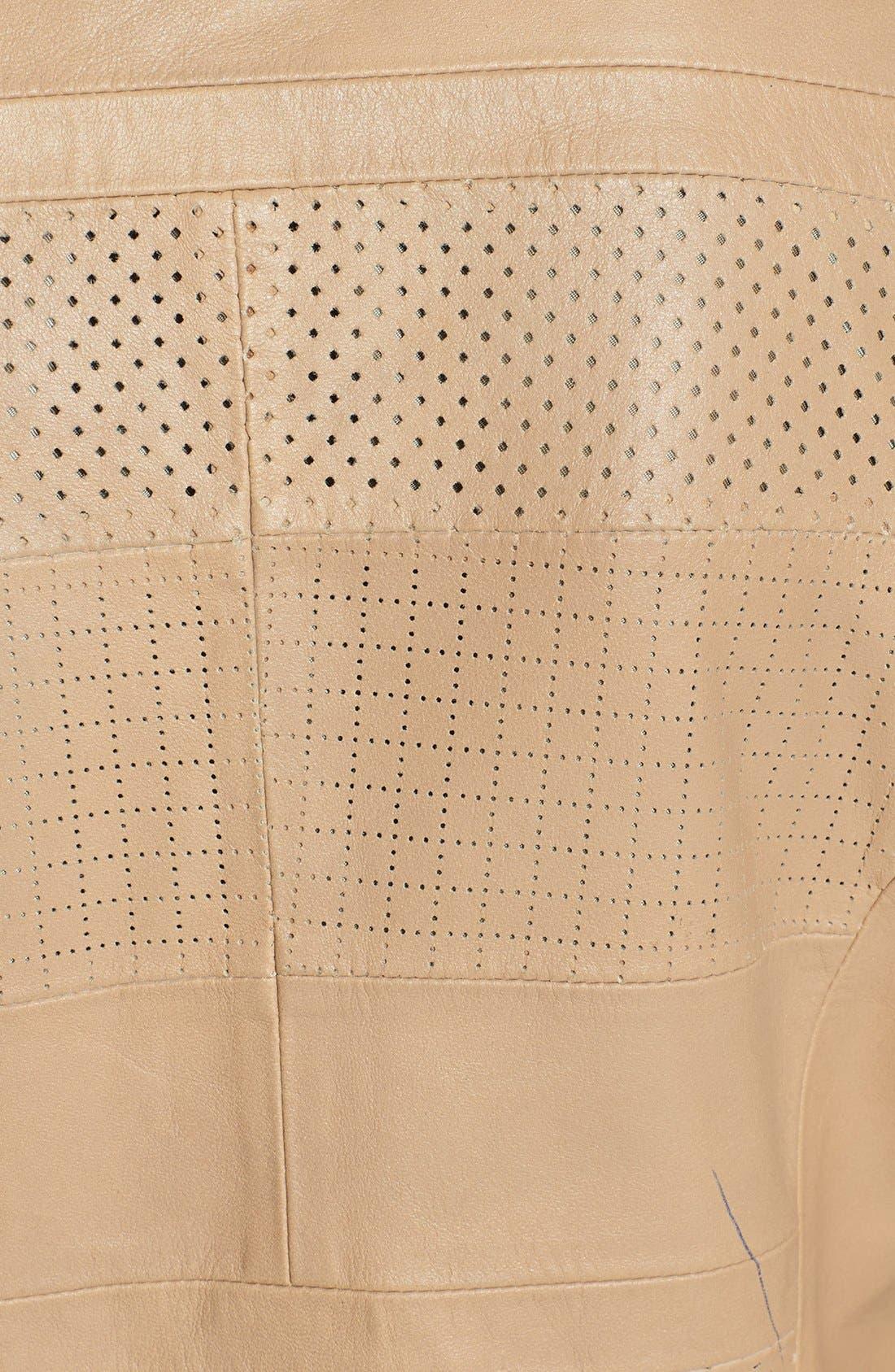 Alternate Image 3  - Bernardo Perforated Leather Jacket (Regular & Petite)