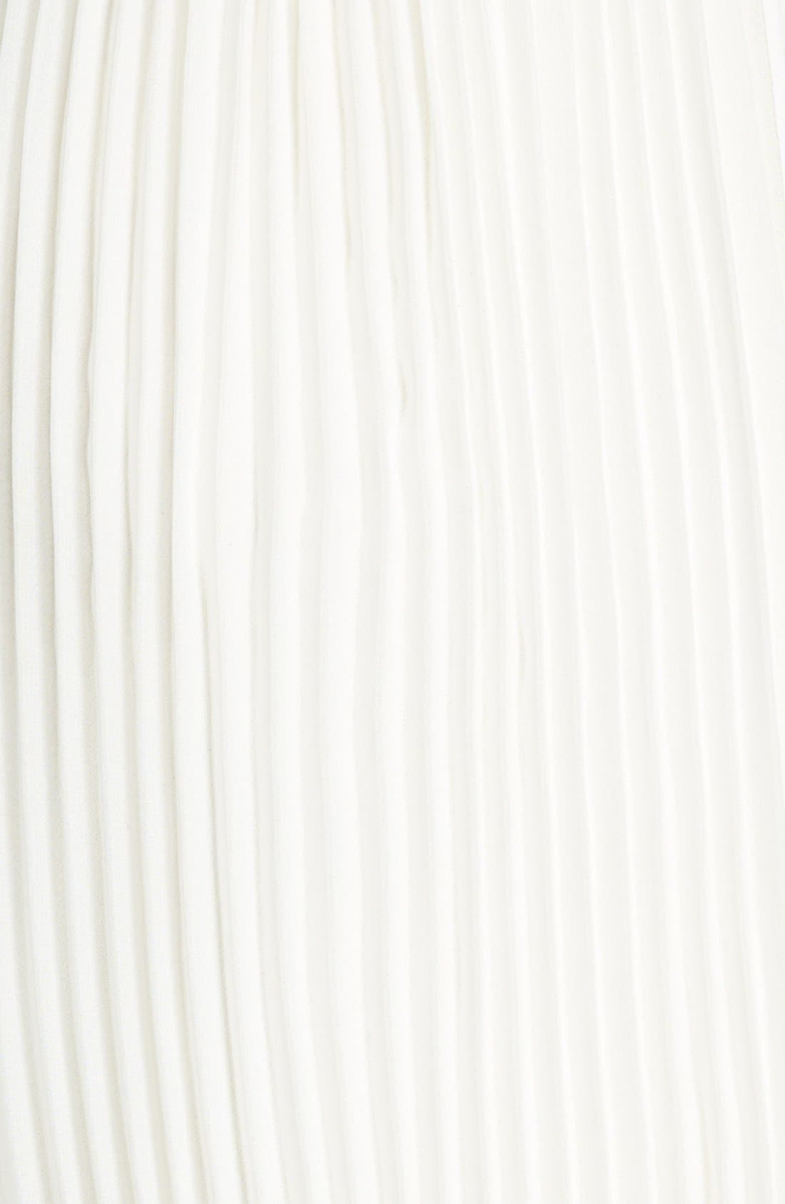 Alternate Image 3  - Rules of Etiquette 'Olivia' Pleated Maxi Skirt