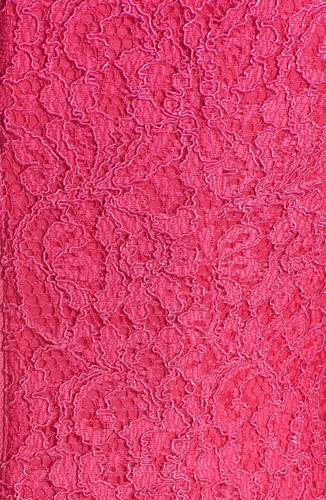 Alternate Image 4  - Adrianna Papell Lace Sheath Dress