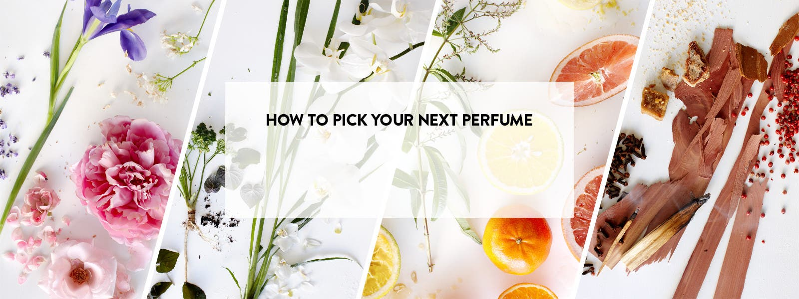 How to pick your next perfume.