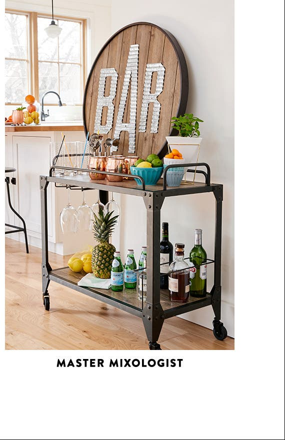Bar And Kitchen Accessories And Decor For Master Mixologists