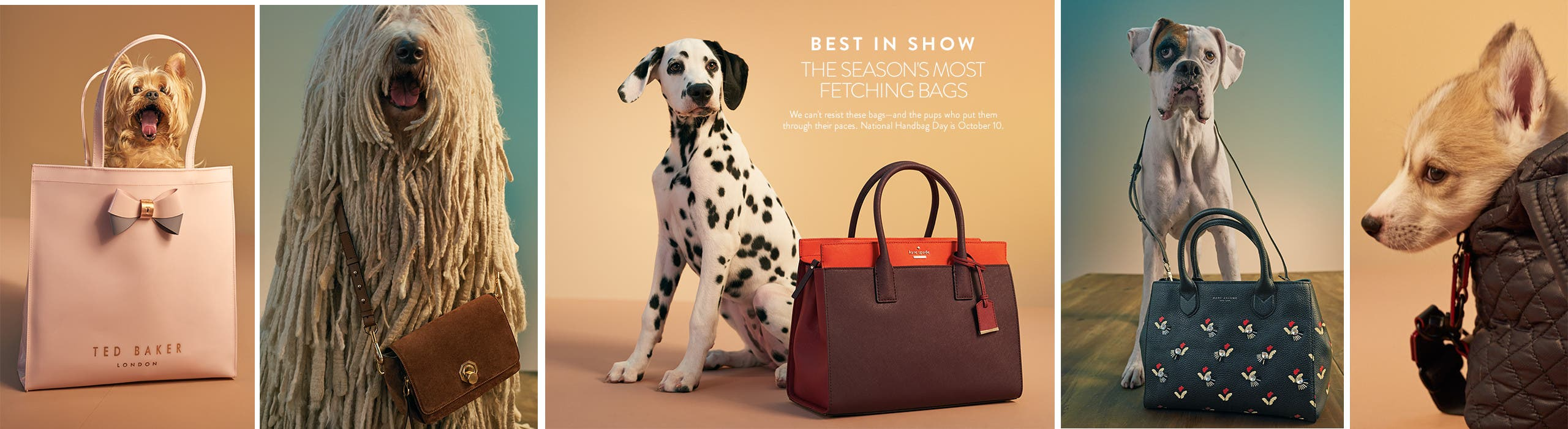 Best in show - the season's most fetching bags.