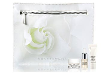 Chantecaille gift with purchase.