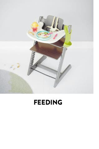 Feeding essentials for baby.