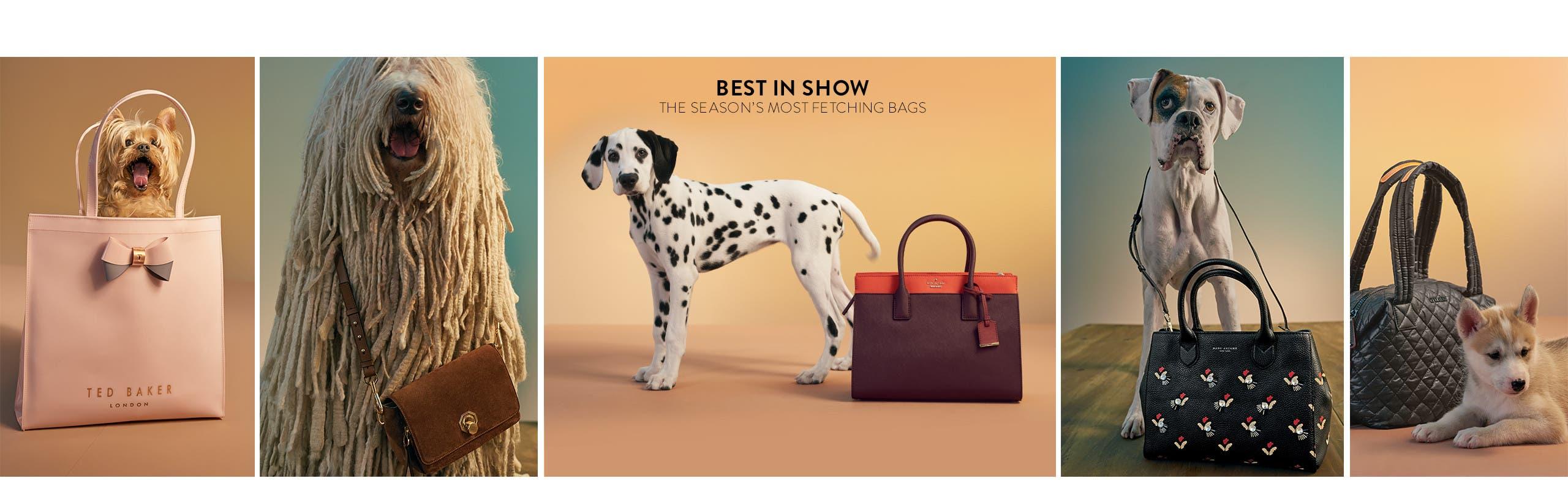 Best in show: national handbag day.