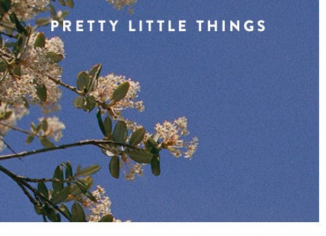 Pretty little things.