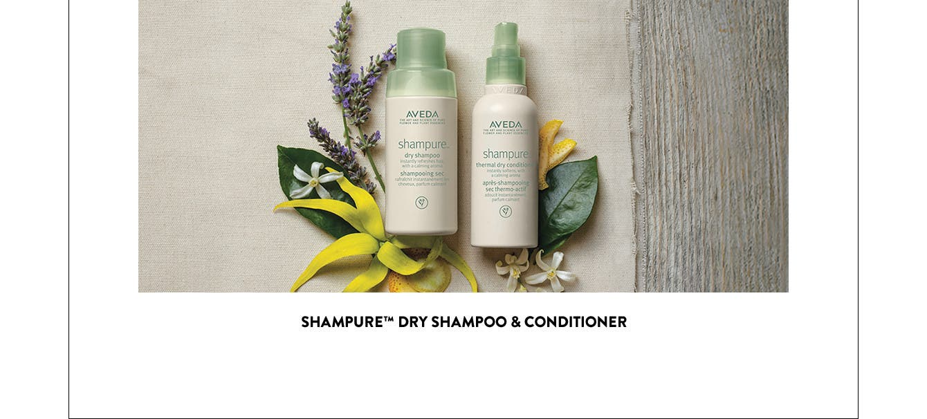 shampure dry shampoo and conditioner.