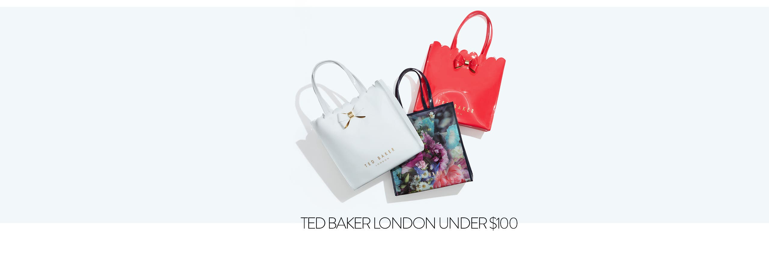 Ted Baker bags under $100