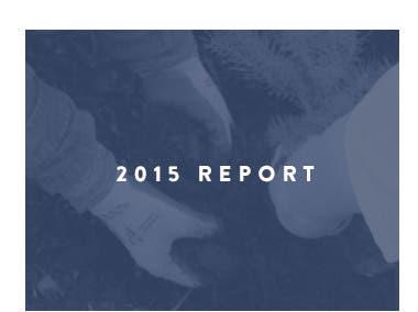 2015 corporate social responsibility report.