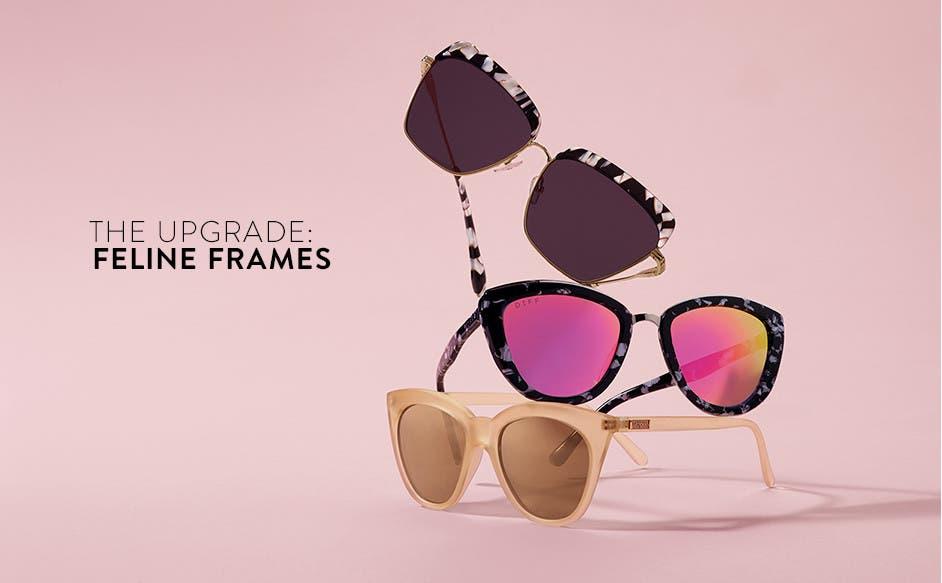 The upgrade: feline sunglasses.