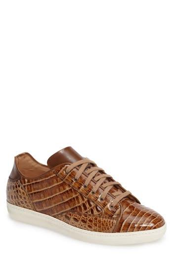Men's Mezlan Hickman Genuine Crocodile Sneaker