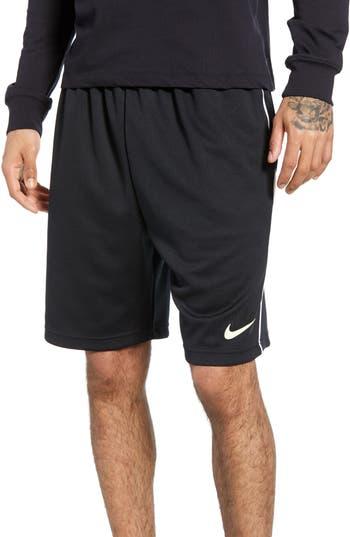 Nike SB Dry Sunday Morning Shorts