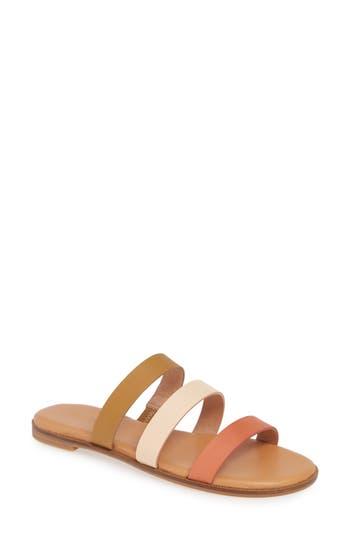 Madewell The Ilana Colorblock Slide Sandal (Women)
