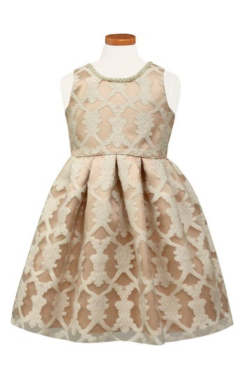 Toddler Girl's Sorbet Burnout Lace Party Dress