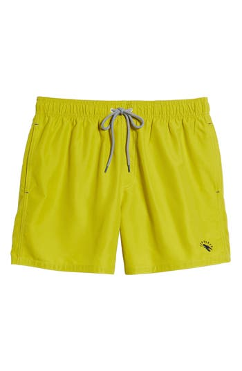 Ted Baker London Danbury Swim Shorts, Green
