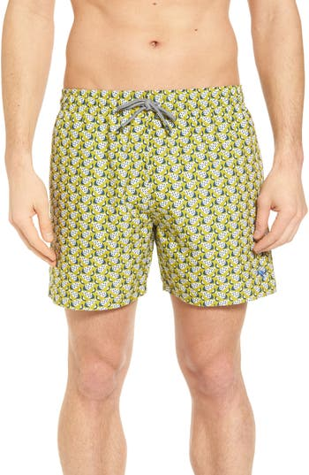 Ted Baker London Loxham Fish Geo Print Swim Short, Green