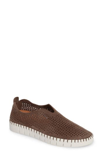 Jeffrey Campbell Tiles Perforated Slip-On Sneaker- Brown