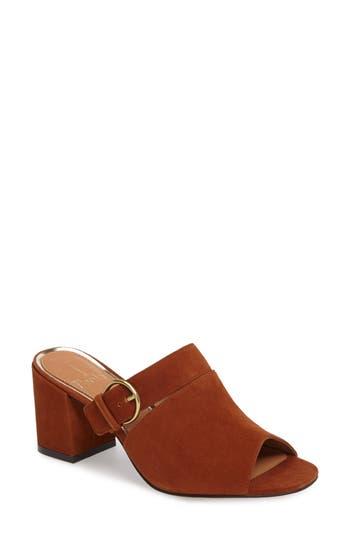 Women's Linea Paolo Isla Block Heel Mule, Size 5.5 M - Brown