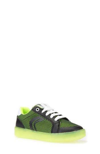 Boys Geox Kommodor LightUp Mesh Sneaker