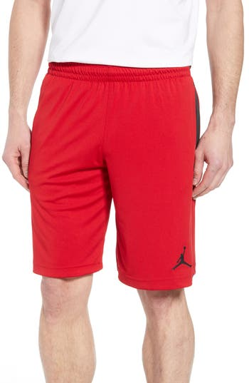 Nike Jordan 23 Alpha Dry Knit Shorts