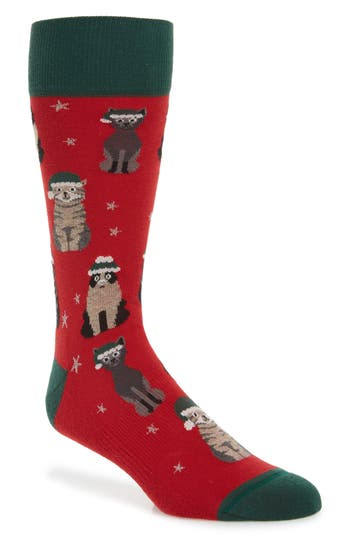 Nordstrom Men's Shop Holiday Cat Socks